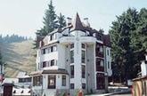 Хотел Вила Алпин